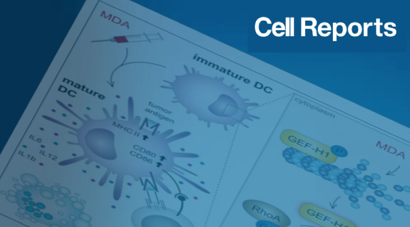 Kashyap Cell Reports 2019
